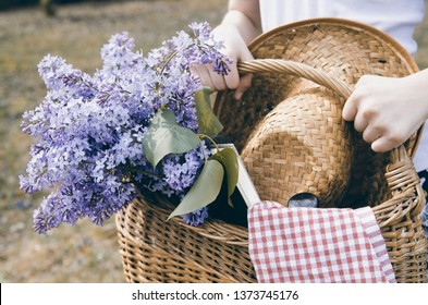 Girl hands carrying wicker basket with lilac flower bouquet,straw hat and picnic food