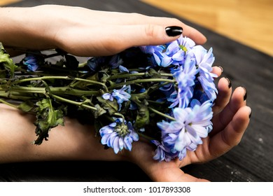 girl hands holds beautiful flowers on black background