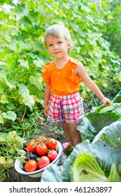 Girl with harvest vegetables in the garden