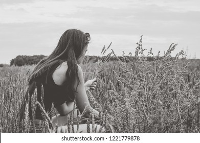 The girl harvest wheat spikelets on the field. Black and white photography.