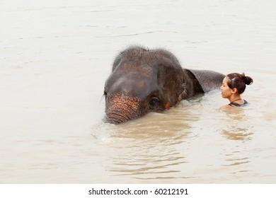 Girl has bath with elephant