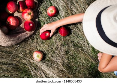 Girl with a heat collecting apples