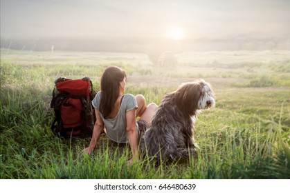 A girl and her dog are sitting on a meadow enjoying the sunset