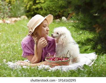 A girl and her friend a white poodle on a picnic in the summer garden.next to the basket with ripe cherries