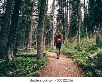 Girl hiking into the west canadian forest