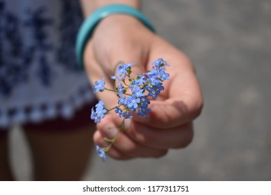 Girl holding flowers close up