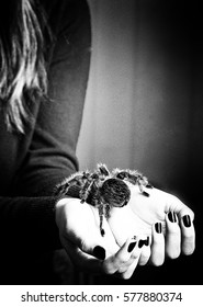 Girl is holding a large spider in her hands.