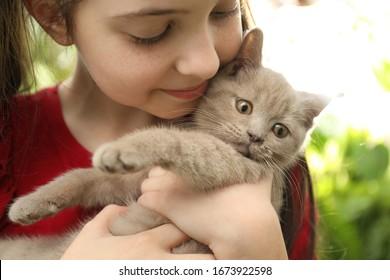 Girl holding Scottish straight baby cat on blurred background, closeup