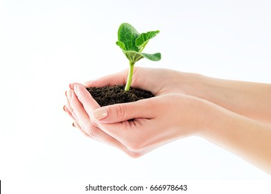 Girl holding a seedling with earth isolated