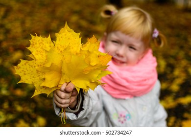Girl holding yellow maple leaves in a park on a sunny autumn day