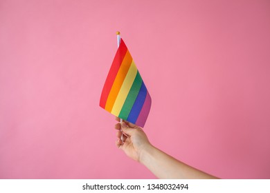 A girl holds in her hand a rainbow flag or LGBT flag on a pink background.
