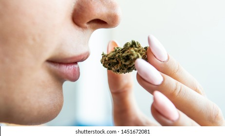the girl holds a marijuana bud in her hands and sniffs her smell in front of her face.
