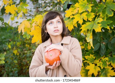 Girl holds a pumpkin on a background of autumn yellow leaves