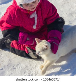 Girl and homeless, white, cat, Winter. The child strokes the street, homeless cat. Caring for the animal.