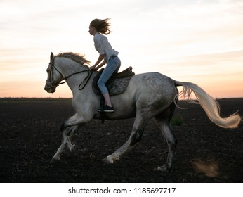 Girl and horse at sunset, jumping over the field