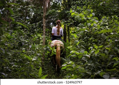 Girl Horseback Riding in the Dark Mysterious Jungle of Belize in Central America