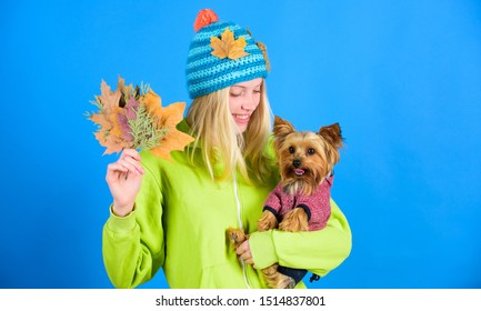 Girl hug cute dog and hold fallen leaves. Woman carry yorkshire terrier. Take care pet autumn. Veterinary medicine concept. Health care for dog pet. regular flea treatment. Pet health tips for autumn.