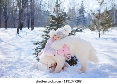 girl hugs and plays with a samoyed dog in the snow under a small Christmas tree in the park