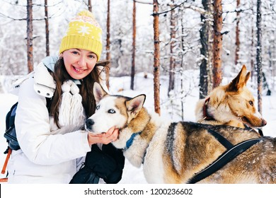 Girl and Husky dogs in sled in Finland in Lapland in winter.