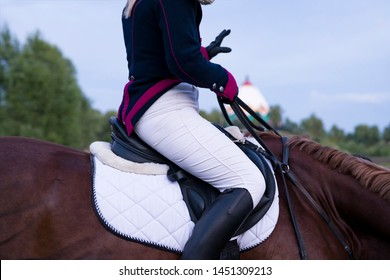 Girl jockey in dress uniform sitting on a horse. Depicted: a fragment of the girl's body, the muzzle of a horse, bridle, reins, saddle and stirrup. Side view.