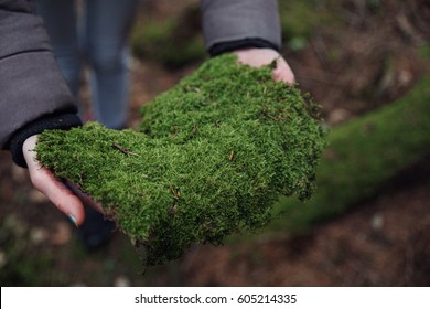 girl keeps a green moss in his hands