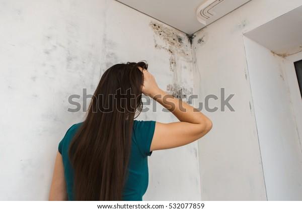 la chica mata moho en casa