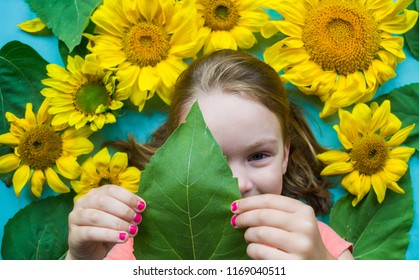 real sunflower images stock photos vectors shutterstock