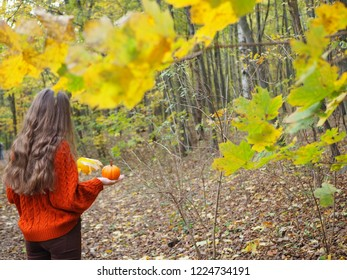 Girl with long hair an in autmn park. A teenager holding a orange pumpkin in her hand