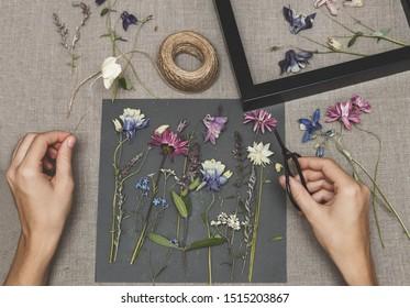 Girl making herbarium. Dried herbs and dried flowers for making herbarium