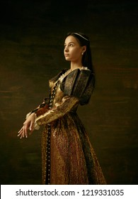 Girl in medieval Renaissance beautiful dress or costume of the countess at dark studio.