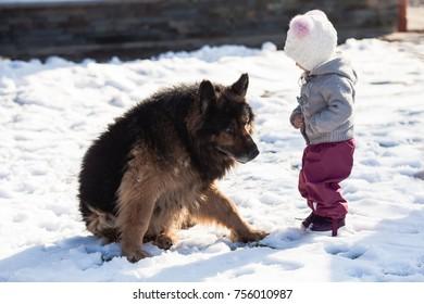 Girl meets a dog on winter walk