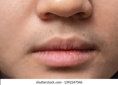 Girl with Mustache, Hairy woman at mouth,Shemale