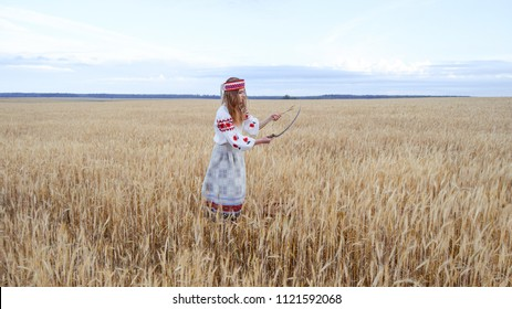 Girl in an old traditional Belarusian dress with embroidery. Young beautiful woman standing on a wheat field and reaping wheat with an old sickle.