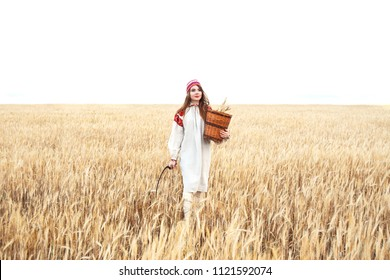 Girl in an old traditional Belarusian dress with embroidery. Young beautiful girl standing on a wheat field with a basket and sickle.