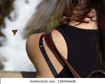 A girl on black is looking at a cascade while a butterfly flies next to her