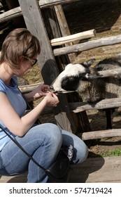 The girl on a farm in sammer