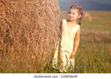 girl on the field in the summer
