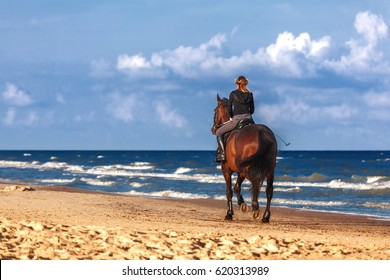 Girl on a horse galloping along the beach on a Sunny day. Ventspils, Latvia.