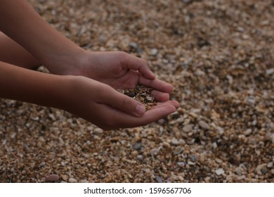 girl on the seashore plays with sand and pebbles the beauty of nature