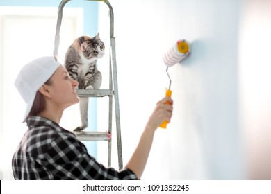 Girl painter, designer and worker paints a roller and brush the wall. The cat sits next to the ladder and looks at the work.