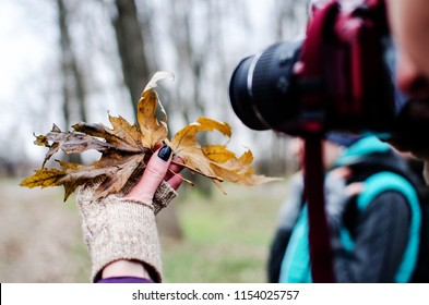 girl is photographing maple leaves on a mirror camera in an autumn park. A maple leaf in the hand of a girl in a glove. Photo walk.