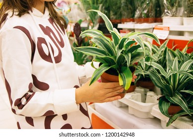 girl picks up flowers plant in a pot in the store