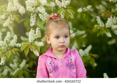 The girl in the pink blouse  beside a blossoming cherry. Portrait of a girl that is sad and frustrated looks into the camera lens. Spring!