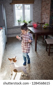 girl playing with a dog at home in the kitchen