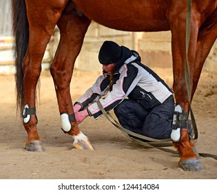 A girl playing with the horse in the arena
