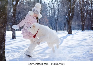 girl playing with a Samoyed puppy in a snow-covered park on Christmas morning. Jumping up behind snowballs