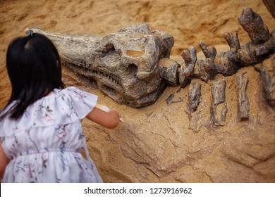 Dinosaur Dig Images, Stock Photos & Vectors | Shutterstock