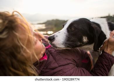 Das Mädchen spielt und umarmt den Hund und reist auf dem Berg. Ein junges Mädchen spielt mit ihrem Hund in der Natur. Liebe zu den Tieren.