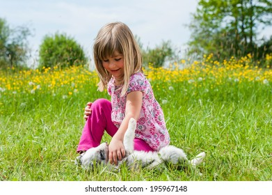 Girl with puppy in a spring meadow