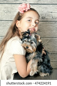 Girl with a puppy Yorkshire Terrier